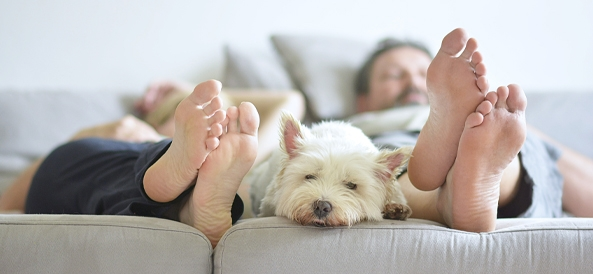 Couple dans son lit en train de se reposer avec leur chien