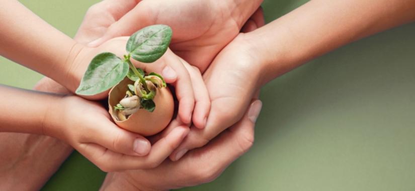 photo de mains d'adultes et d'enfants tenant une coquille d'oeuf dans laquelle pousse un arbre